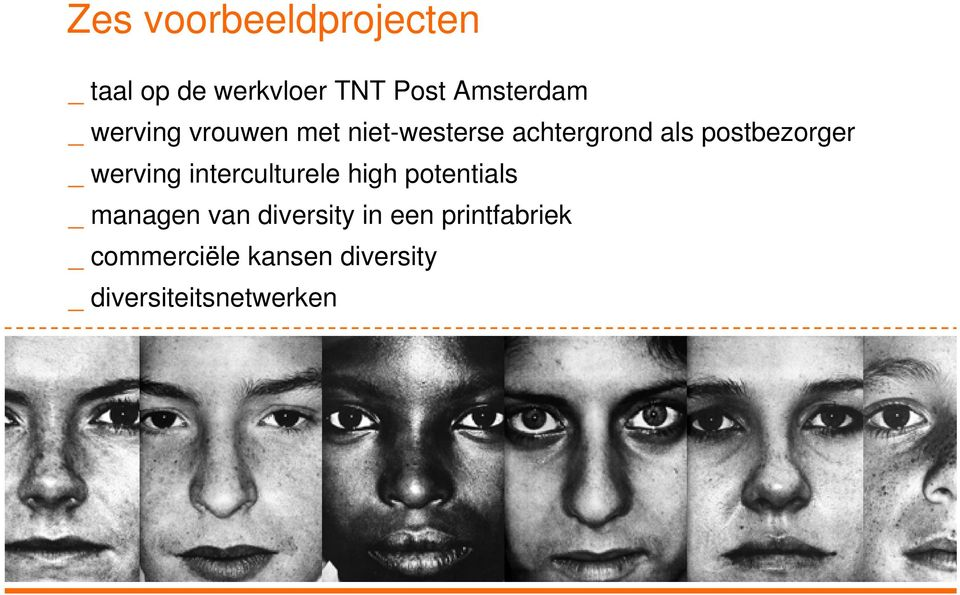 werving interculturele high potentials _ managen van diversity in