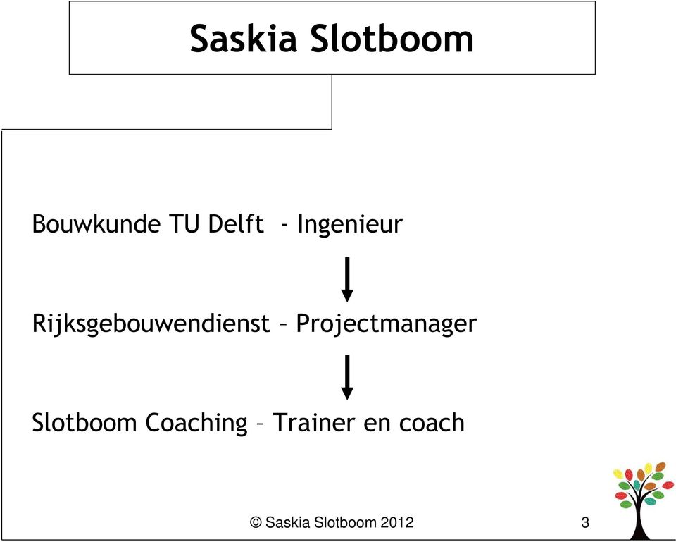 Projectmanager Slotboom Coaching