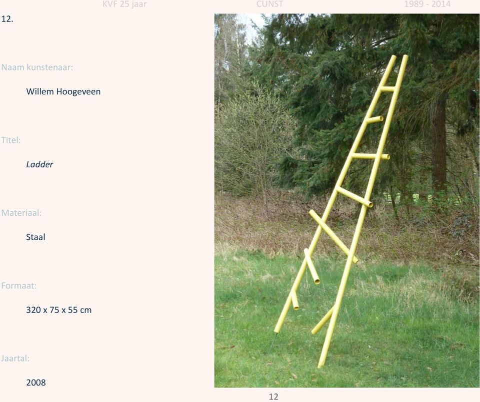 Ladder Staal
