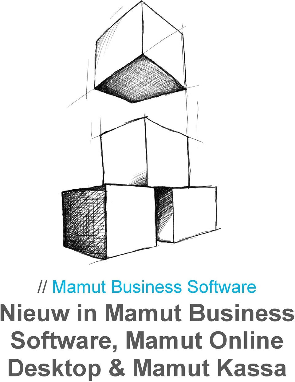 Business Software,