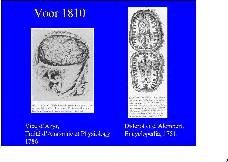 Physiology 1786 Diderot