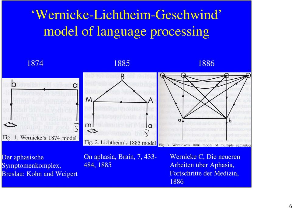and Weigert On aphasia, Brain, 7, 433-484, 1885 Wernicke C,