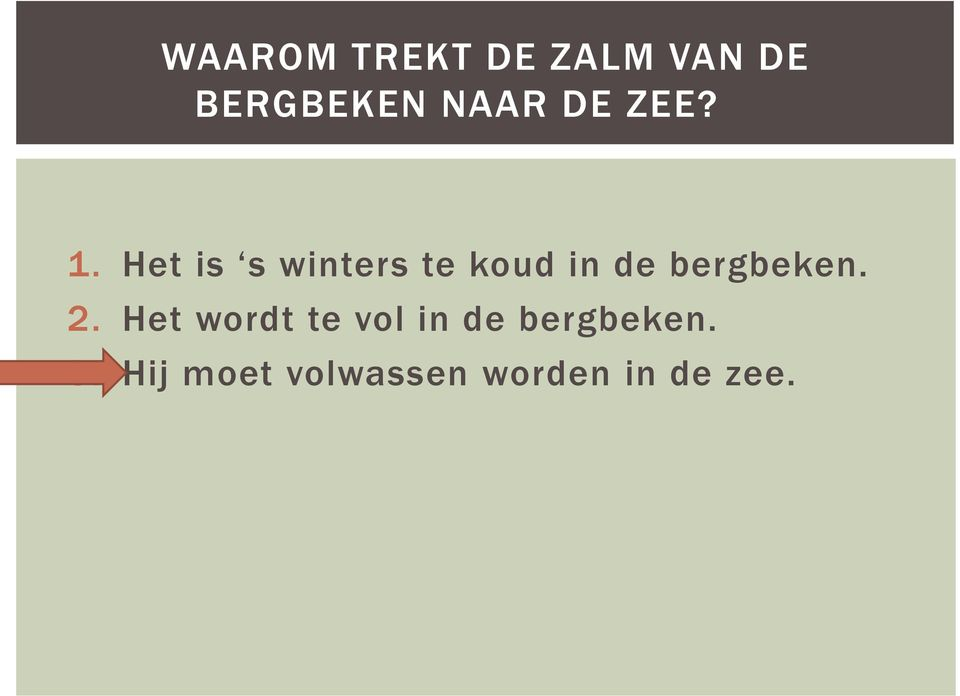 Het is s winters te koud in de bergbeken.