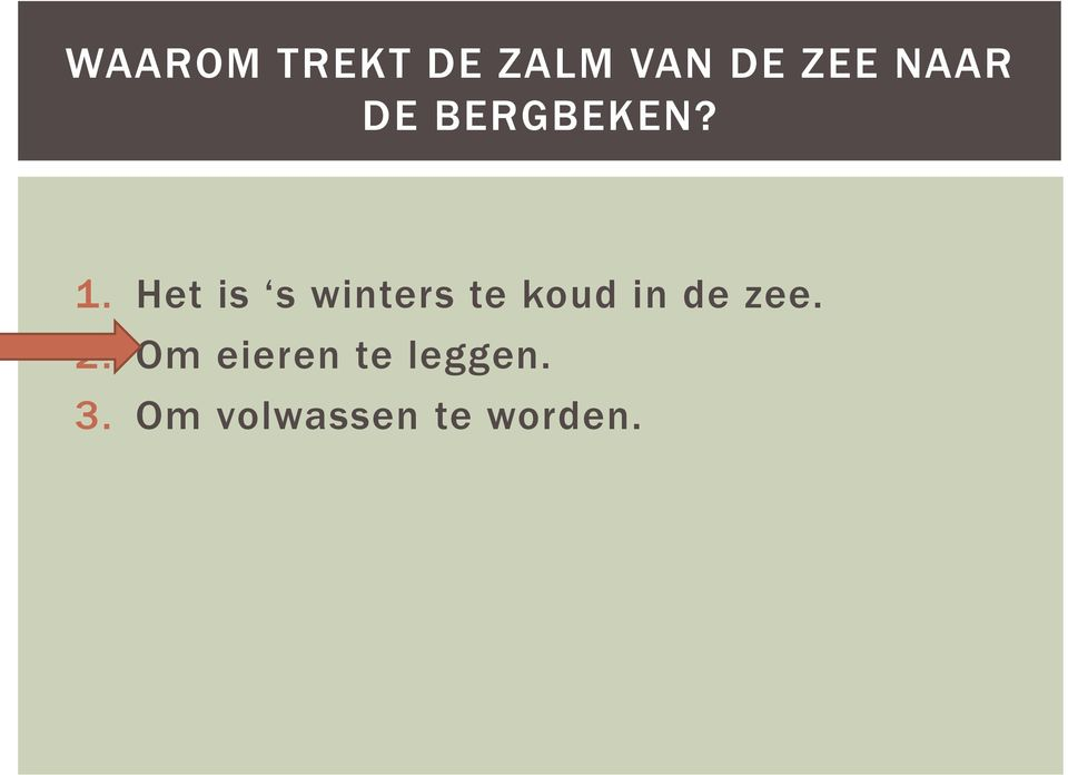 Het is s winters te koud in de zee.