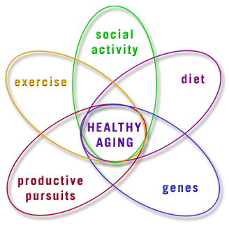 Healthy Ageing Development and maintenance of optimal physical, mental and social well-being and