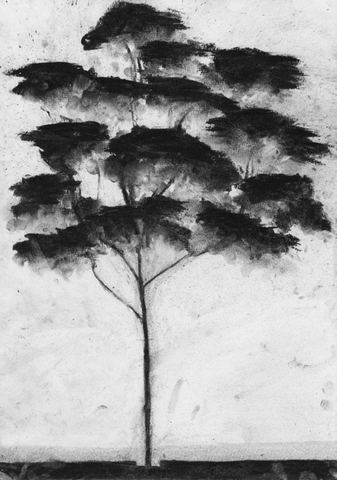 Li Vern Lim Dust Clouds Charcoal smudged by hand A3 Dessin paper A tree. Finding a style. Discovering a gesture. Inventing a body movement. Repeat. A strong line. A scribble. Smudge down. Erase.