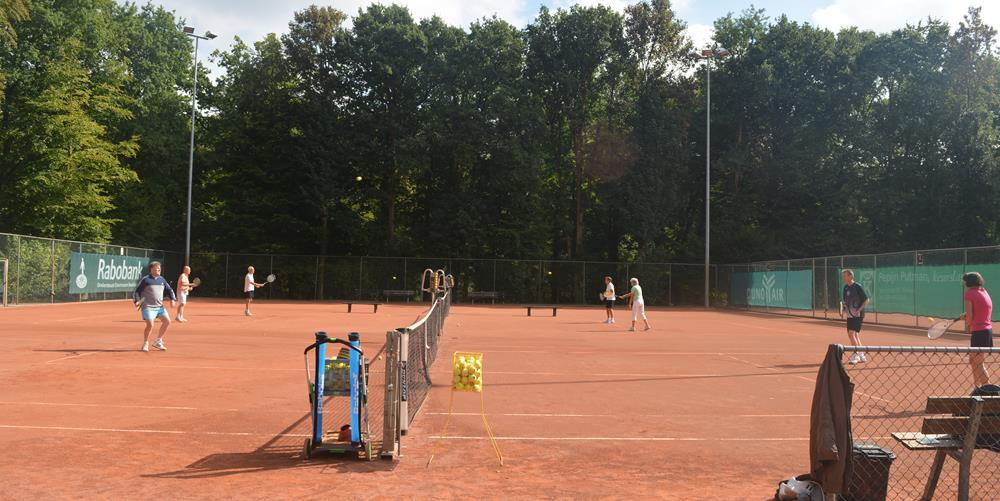 Trainers Toss Tennis