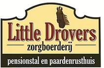 Jaarverslag Januari 2014 - december 2014 Little Drovers Boerderijnummer: