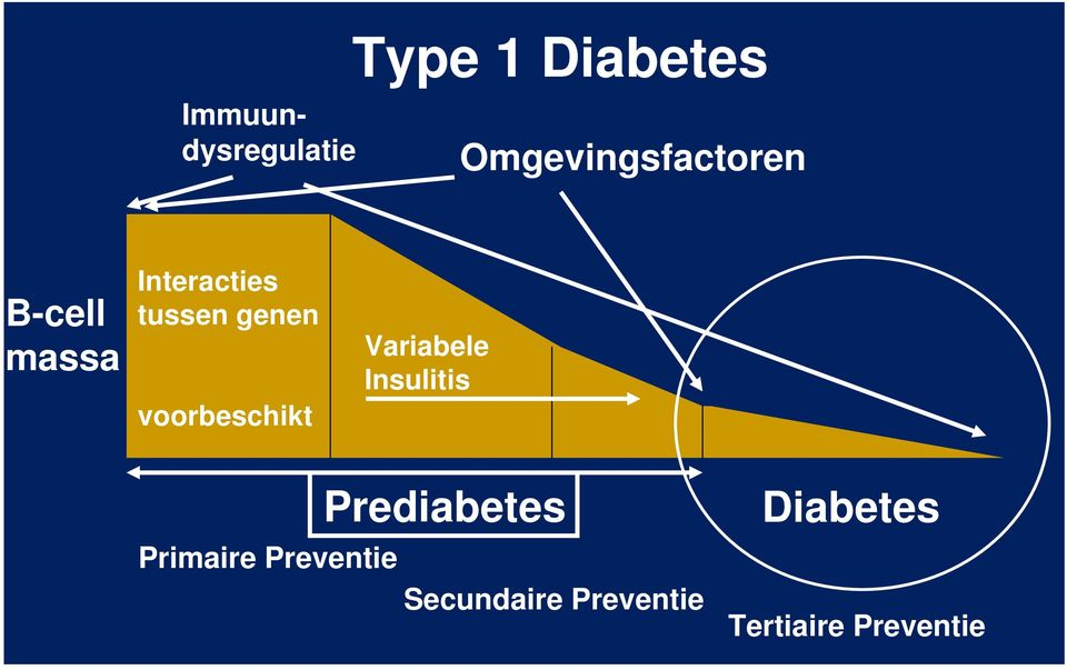 Tertiaire preventie bij diabetes